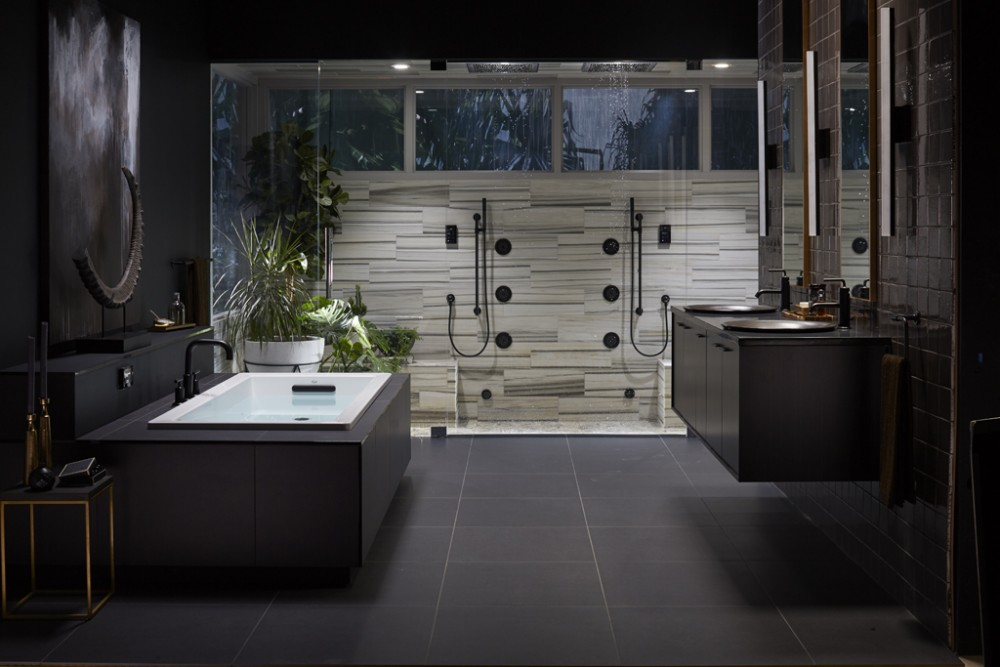 Midnight Canopy Bathroom Kohler Ideas