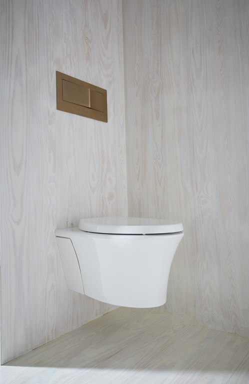 Veil® toilet    The sleek wall-mount toilet with dual-flush capability perfectly suits the clean simplicity of the walls and floors.