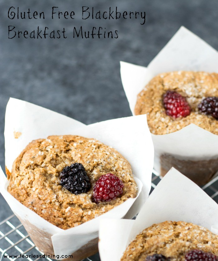 Gluten Free Blackberry Almond Flour Breakfast Muffins by Fearless ...