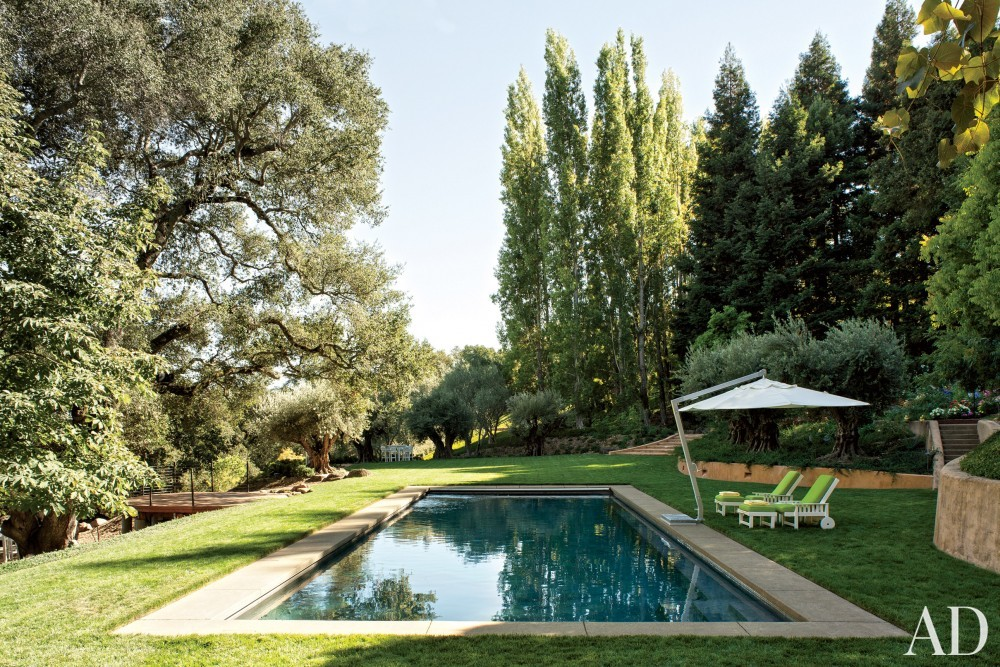 Contemporary Pool by Mica Ertegun and Walker & Moody Architects in Sonoma Valley, CA