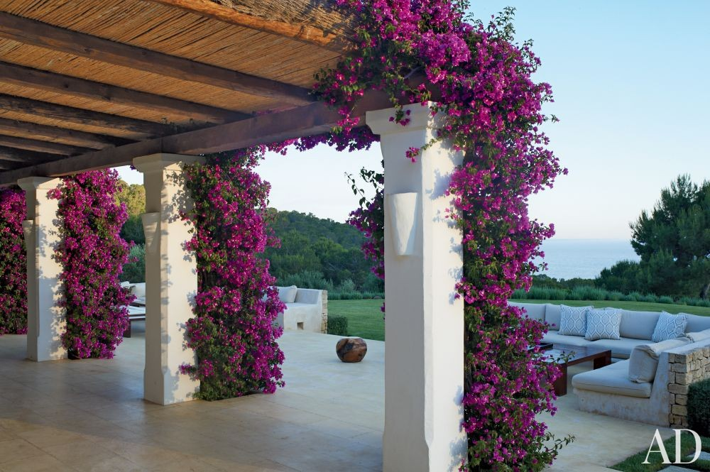 Exotic Outdoor Space by Carden Cunietti Ltd. in Ibiza