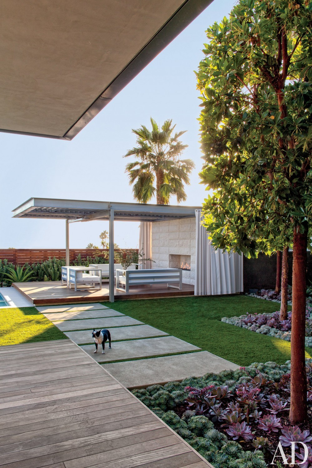 Modern Backyard by Sarah McElroy and Steven Ehrlich in Laguna Beach, CA