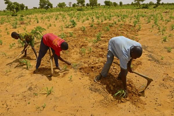 concern-niger-global-hunger-index-1180x788.jpg
