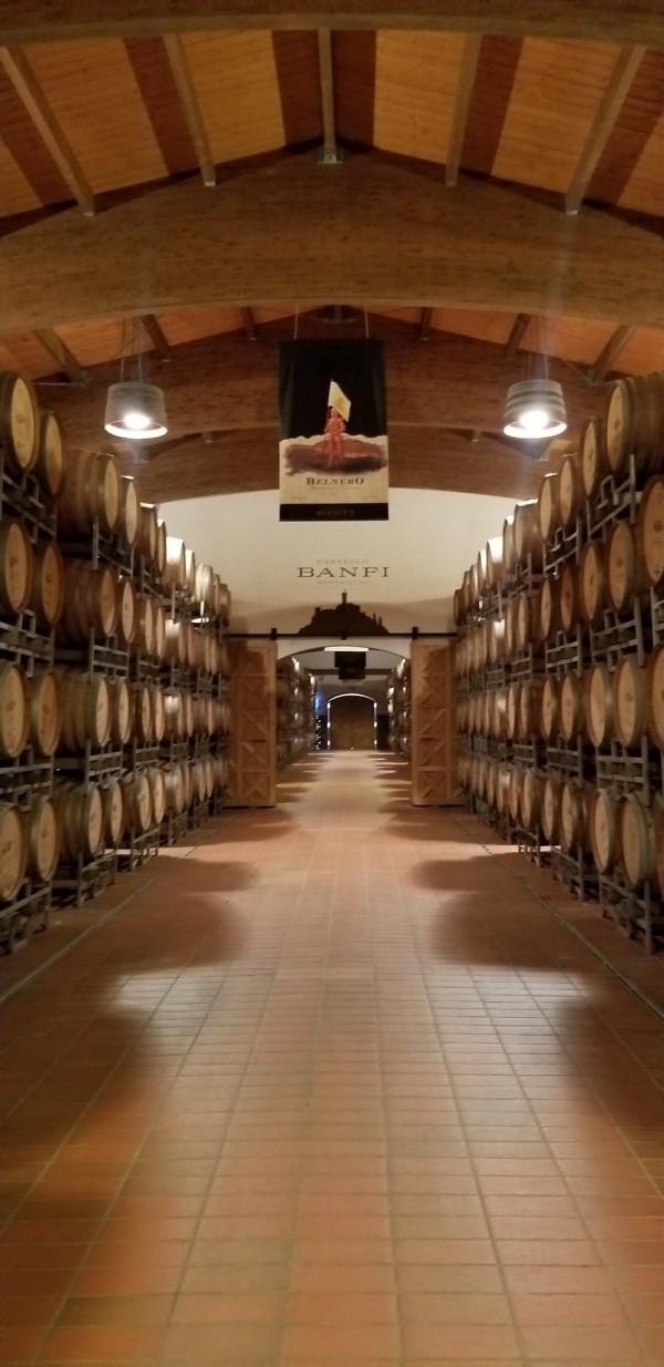 Banfi cellar, photo by Kelly Magyarics