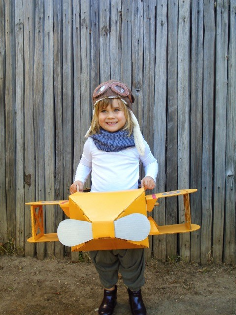 The Kitty Hawk Biplane
