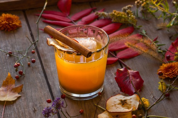 Pumpkin Bourbon & Apple Schnapps Cocktail
