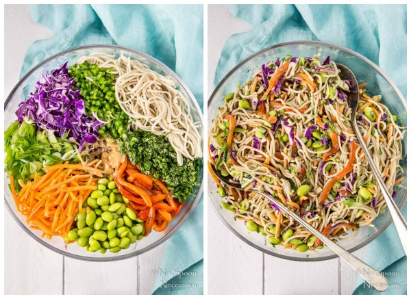Thai Veggie Soba Noodle Bowls with Ginger-Tahini Dressing- set up collage
