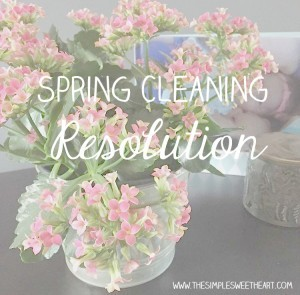 Spring Cleaning Resolution
