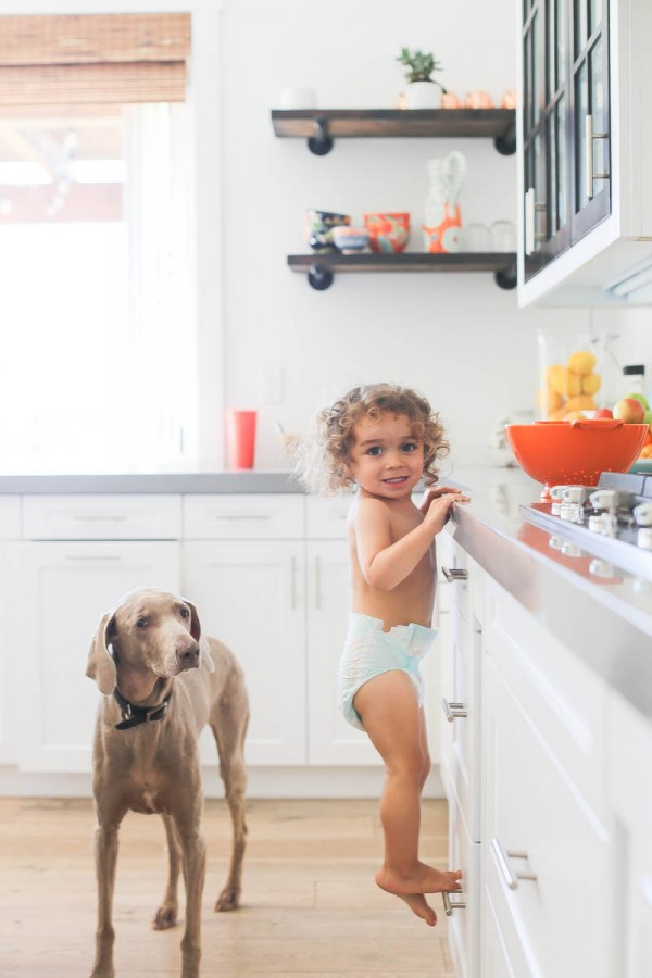 toddler and dog in kitchen