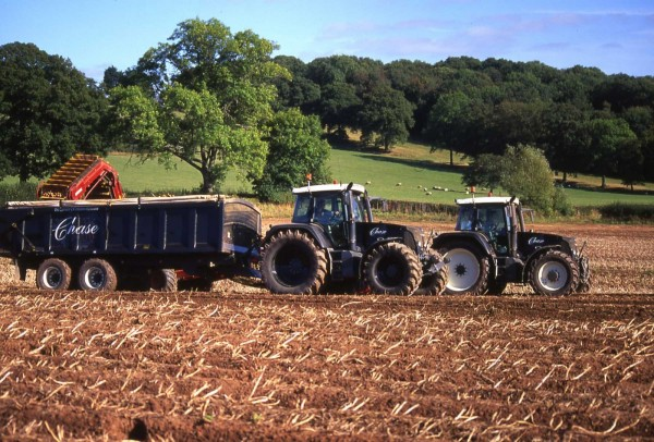 Potato Harvest - Photo: Chase Distillery