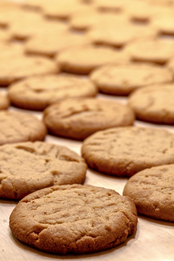 Maple-Peanut-Butter-Cookies-Picture.jpg