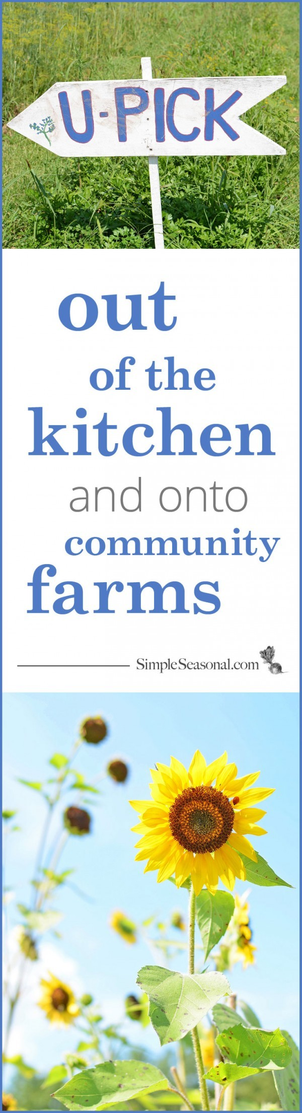 out of the kitchen and onto community farms