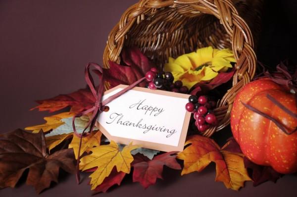 TS-521184193 happy Thanksgiving