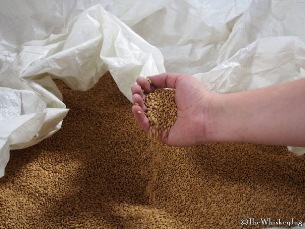 Sacks of grain at the Balcones Distillery