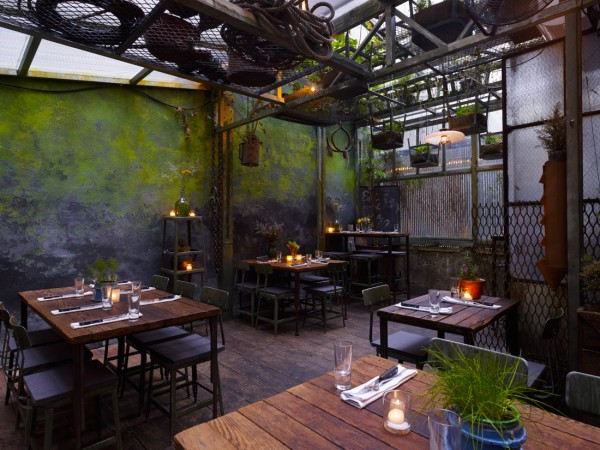 NYC - Edi & The Wolf - Interior - Garden patio3