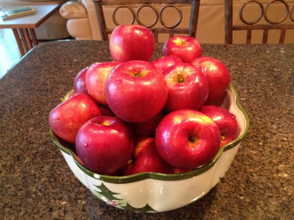Large beautiful homegrown Jonathan apples