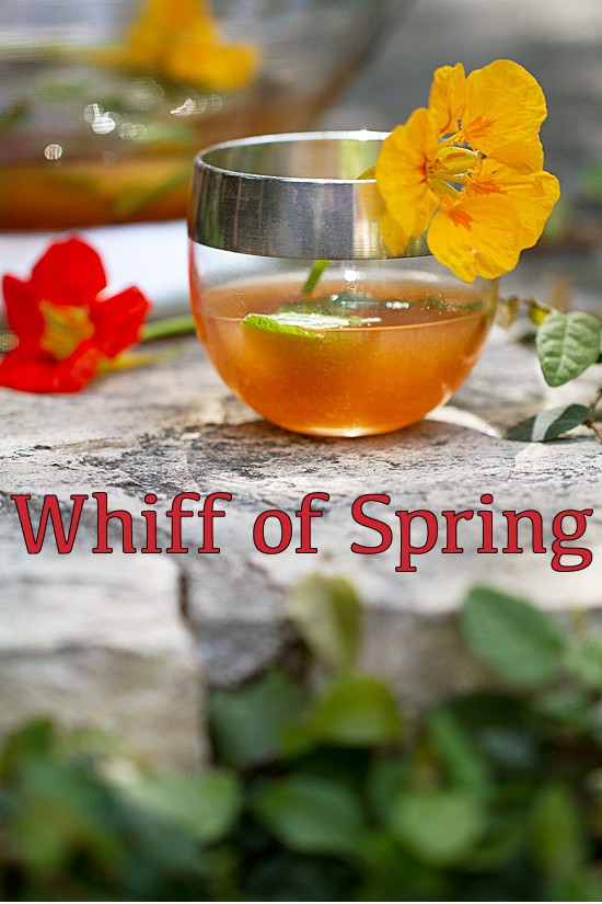 Whiff Of Spring Elderflower Punch
