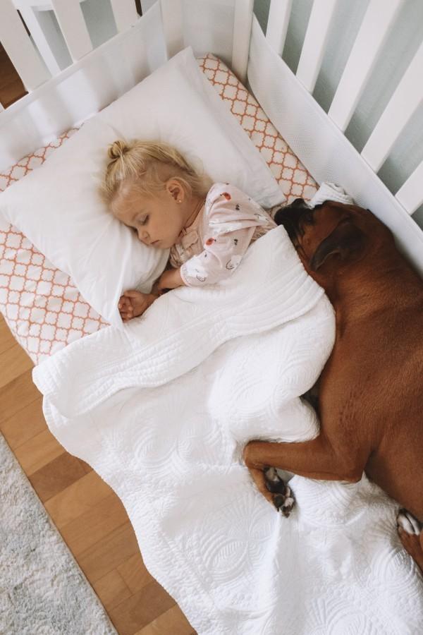 The Overwhelmed Mommy Blogger