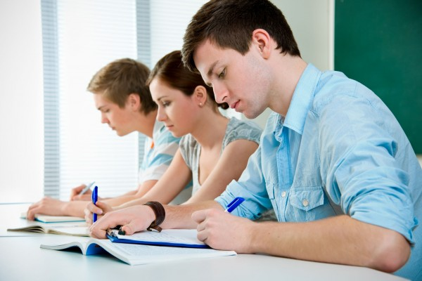 Professional essay writers online  Best prices