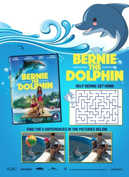 dolphin-fun-429x585.jpeg