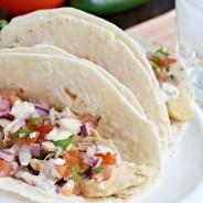 tequila-chicken-tacos-2-184x184.jpg
