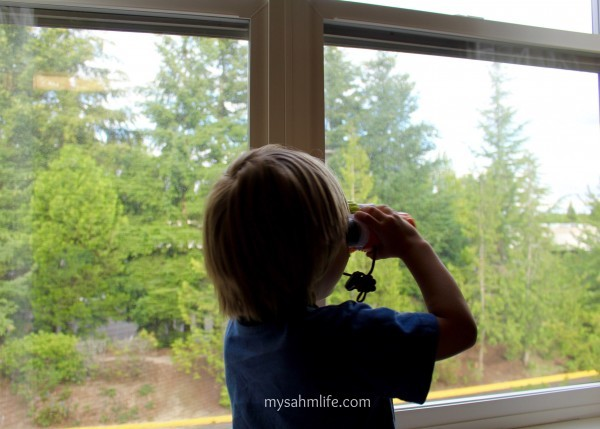 We celebrated his 3rd birthday in Portland, OR. He's using a birthday gift to look out the hotel window.