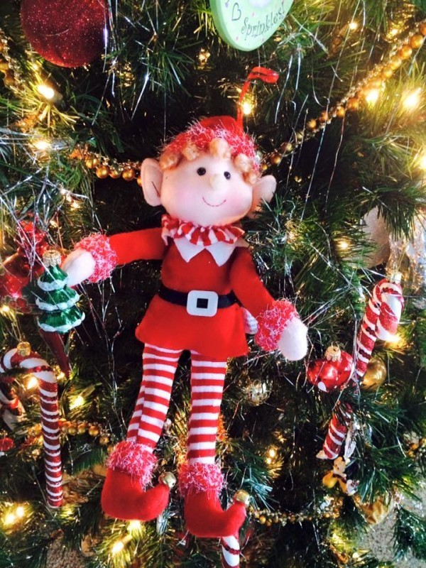 Jingle, our Kindness Elf