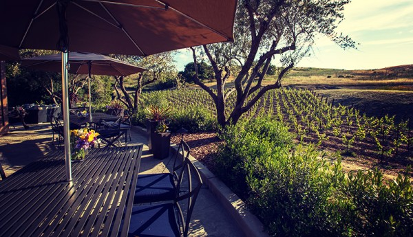 3 Family Wineries To Embrace In Napa - Forbes Travel Guide