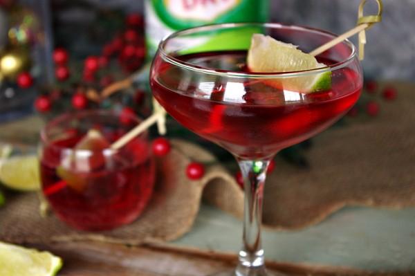 Cranberry Sparkletini