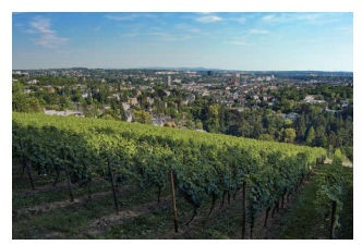 germany wine region