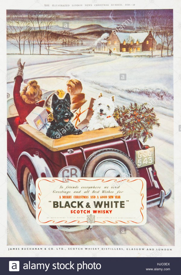 black-white-scotch-whisky-advert-in-the-illustrated-london-news-magazine-HJC0EX.jpg