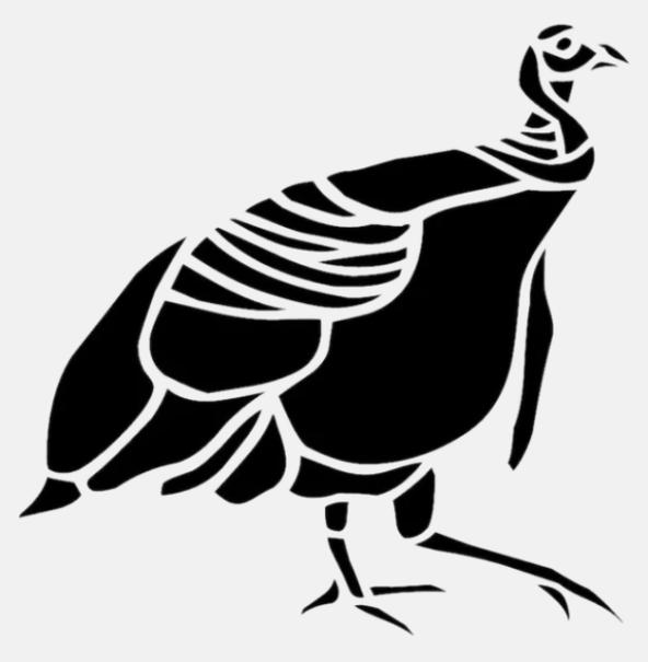 Rarebird 101 Logo