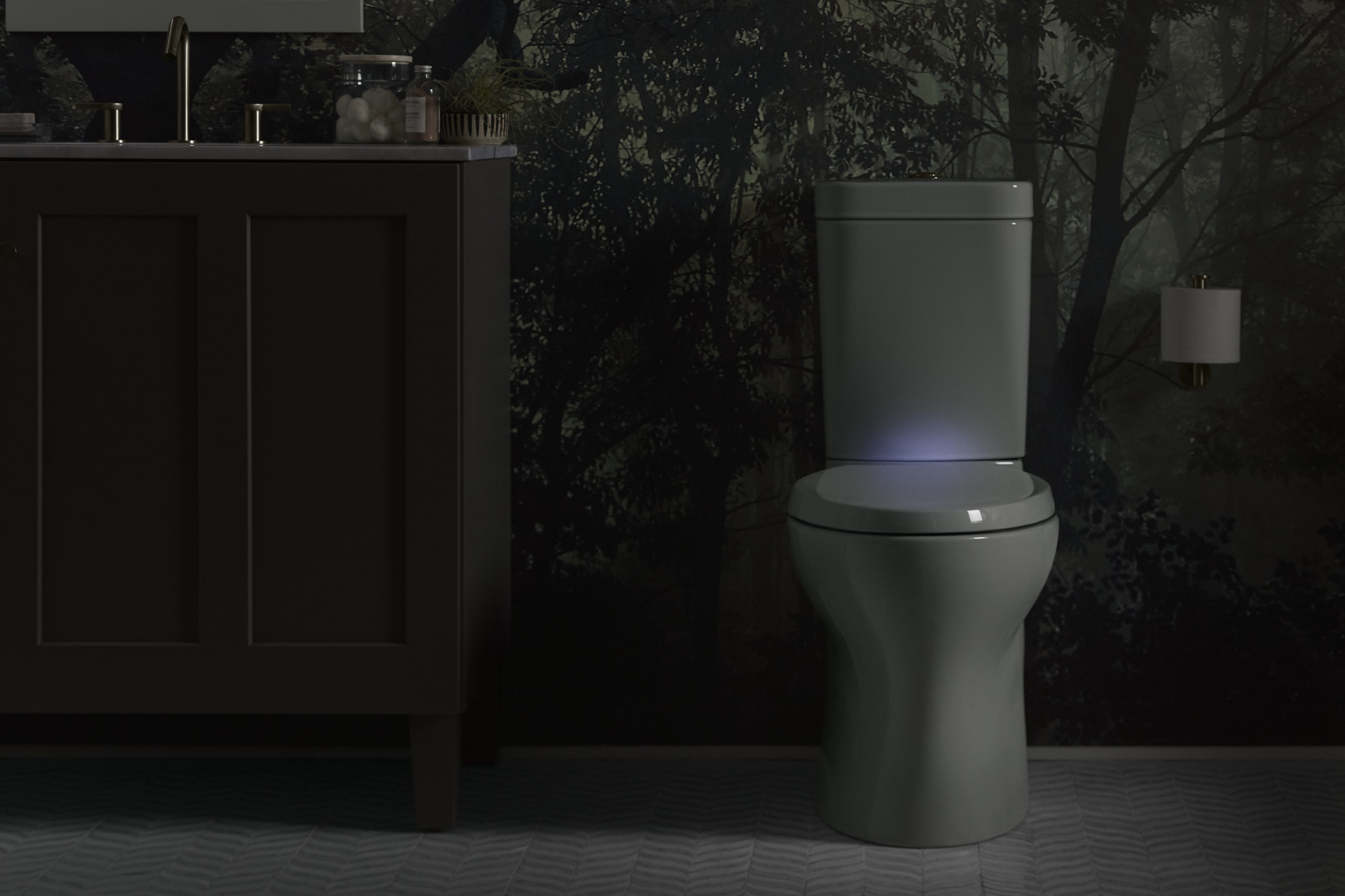 Persuade® Circ toilet     Reveal® toilet seat     Stillness® toilet tissue holder     A toilet seat with a built-in nighlight helps guide you safely and comfortably, even on the darkest nights.