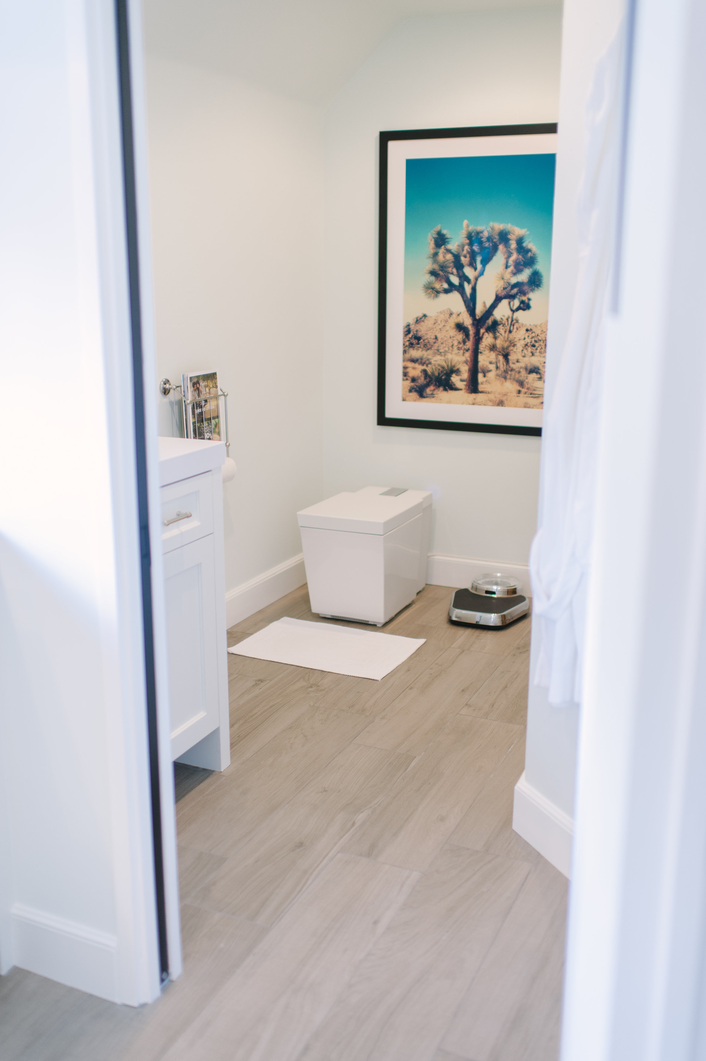 Numi toilet   The luxurious toilet shares its sequestered space with desert-inspired art.