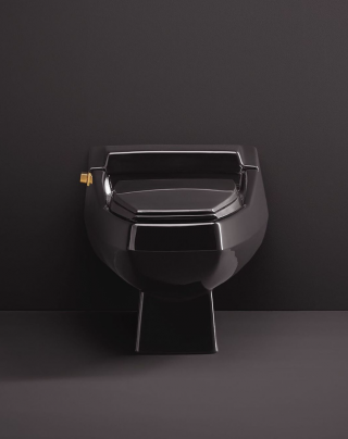 """Our Rochelle toilet looked like """"the future"""