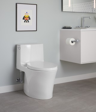 Striking in its form and efficient in its function, the Veil ®  one-piece toilet provides an elegant option that can help save up to 6,000 gallons of water per year (compared to a traditional 1.6 gallon toilet).    Veil® One-Piece