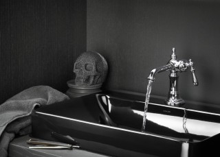 Artifacts® single-handle sink faucet    Vox® Rectangle vessel sink    Set within a dark and moody design, the Artifacts faucet captures an edgier side of Victorian opulence.