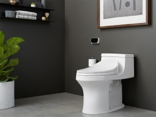 With its sleek curves and low-profile, the San Souci ®  makes a big statement while also saving space. Combine with a bidet seat for added cleanliness and functionality.    San Souci® One-Piece   C³®-230 Elongated bidet toilet sea