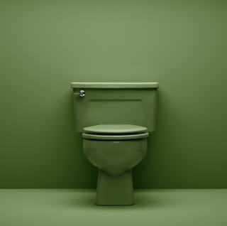 Say hello to our Wellworth ®  toilet in Fresh Green, an original KOHLER color debuting in 1971. Today, we're keeping things fresh and green in a different way.   Water-Saving Innovations   Self-Cleaning Toilets   Bidet Seats