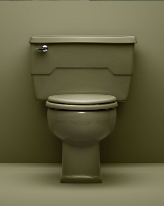 """Ah, the famous KOHLER Avocado, described in our 1968 catalog as the """"go-with-everything"""" green. Just like your avocados at home, this color didn't last long, but that doesn't mean we don't love it. Check out what is fresh in toilets today:   Two-Piece Toilets   All Toilets"""