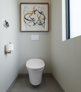 Veil® intelligent toilet    Purist® toilet tissue holder    A wall-mount intelligent toilet combines comfort and hygiene for a new level of freshness and confidence.