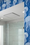 Real Rain overhead panel    A Real Rain overhead shower panel adds to the underwater aesthetic of this cool blue bathroom.